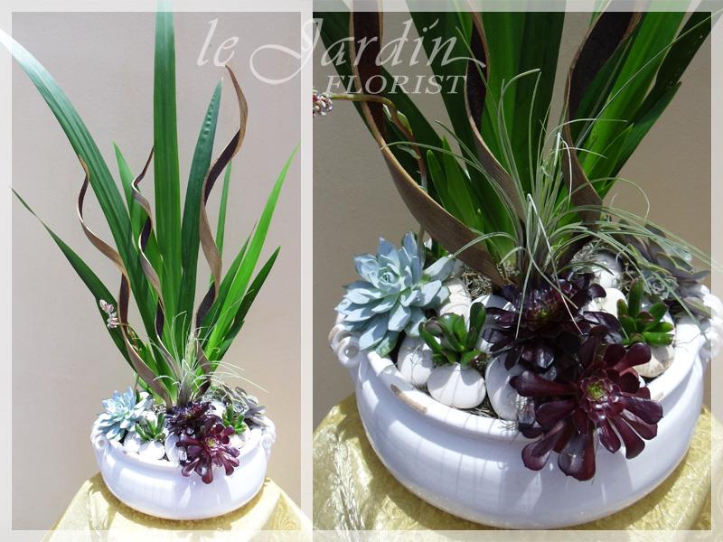 Planters And Live Plants Florist Palm Beach Gardens